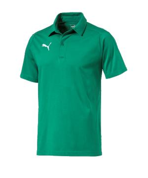 puma-liga-casuals-poloshirt-f05-fussball-spieler-teamsport-mannschaft-verein-655310.png