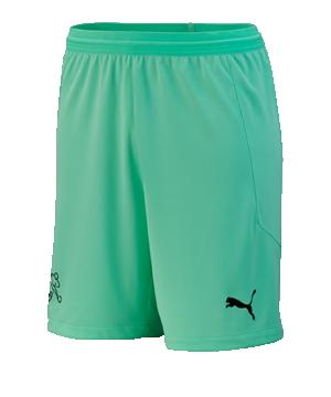 puma-schweiz-torwartshort-em-2020-kids-gruen-f04-replicas-shorts-nationalteams-756573.png