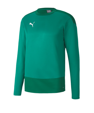 puma-teamgoal-23-training-sweatshirt-gruen-f05-fussball-teamsport-textil-sweatshirts-656478.png
