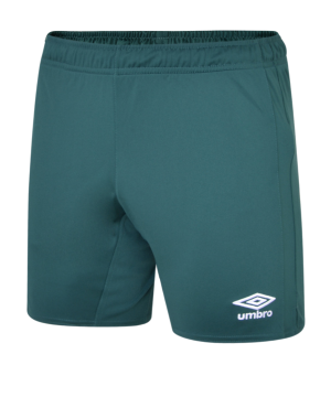 umbro-sv-werder-bremen-short-away-2019-2020-replicas-shorts-national-90620u.png