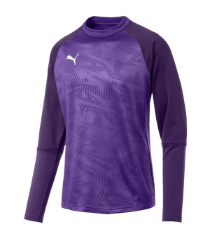 puma-cup-training-core-sweatshirt-lila-f10-fussball-teamsport-textil-sweatshirts-656021.png