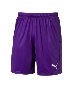 puma-liga-core-short-mit-innenslip-lila-f10-fussball-teamsport-textil-shorts-703615-textilien.png