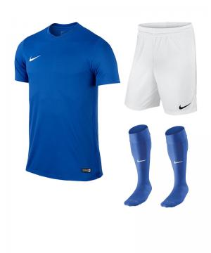 nike-park-vi-trikotset-teamsport-ausstattung-matchwear-spiel-f463-725891-725887-394386.png