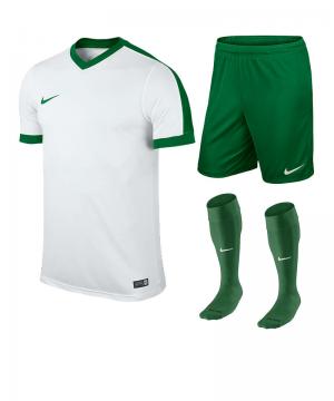 nike-striker-iv-trikotset-teamsport-ausstattung-matchwear-spiel-f102-725893-725903-394386.png