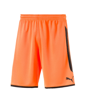 puma-gk-short-torwartshort-orange-schwarz-f44-torwart-goalkeeper-torspieler-short-hose-kurz-herren-men-maenner-703068.png