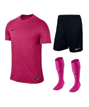 nike-park-vi-trikotset-teamsport-ausstattung-matchwear-spiel-f616-725891-725887-394386.png