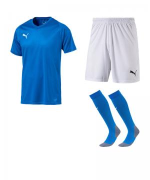 puma-trikotset-liga-core-blau-weiss-f02-trikot-short-stutzen-teamsport-ausstattung-703509.png