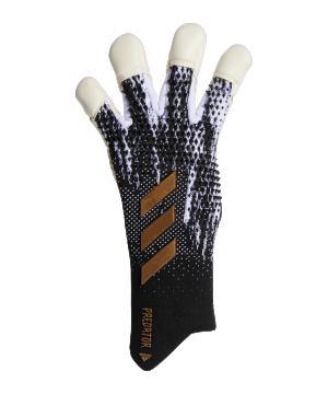 adidas-predator-pro-hybrid-tw-handschuh-schwarz-fs0410-equipment_front.png