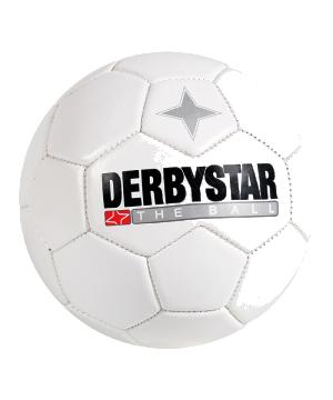 derbystar-miniball-weiss-f100-4251-equipment.png