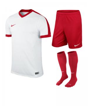 nike-striker-iv-trikotset-teamsport-ausstattung-matchwear-spiel-f101-725893-725903-394386.png