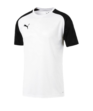 puma-cup-training-core-t-shirt-weiss-f04-fussball-teamsport-textil-t-shirts-656027.png